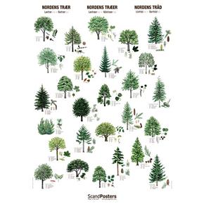 Naturvernbutikken Plakater Plakat Nordens Tr 230 R